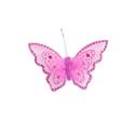Papillons en plumes
