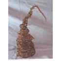 Cone d'arbre