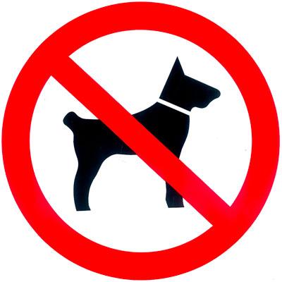 Disque Interdit aux chiens