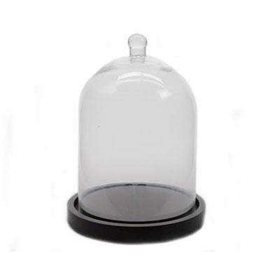 Cloche en verre avec socle