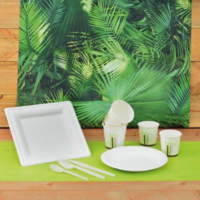 Gobelets en carton biodégradables