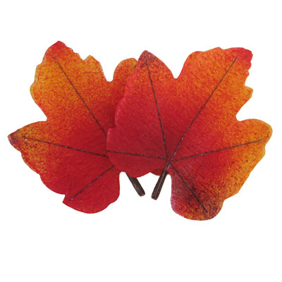 Déco feuilles d'automne