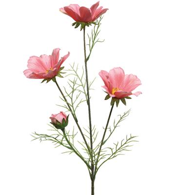 Coreopsis sur tige avec 4 fleurs