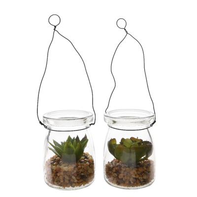 Plante grasse dans pot en verre avec pierres et anse