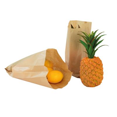 Sacs kraft Fruits et légumes