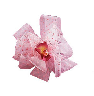Tulle Coeurs