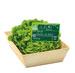 Étiquettes fruits et légumes bio, à pique.