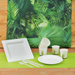 Assiettes jetables 100% compostables