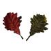 Décor feuilles