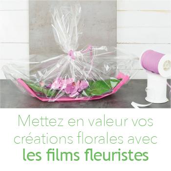 Le film fleuriste qui vous emballe !